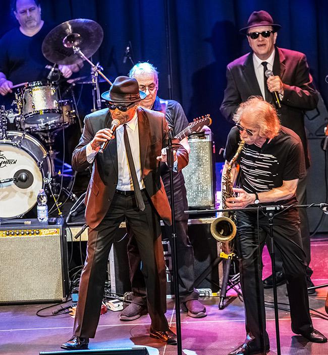 Bluesbrothers Band - Photo: Mümpfer