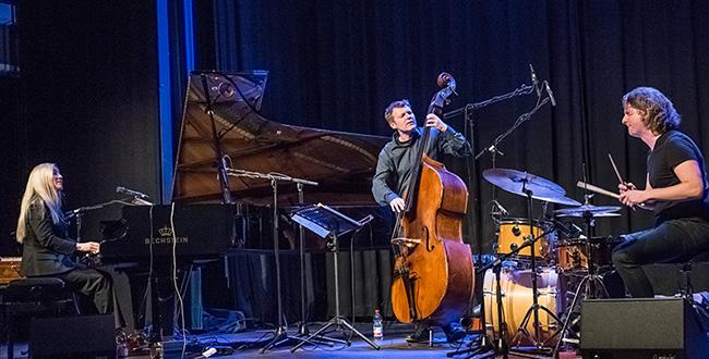 Anke Helfrich Trio - Photo: Mümpfer